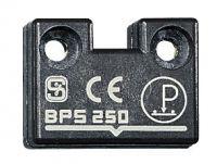 BPS 250 101120594