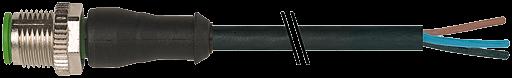 M12 St. ger.mit freiem Leitungsende 3p.Dual-Keyway